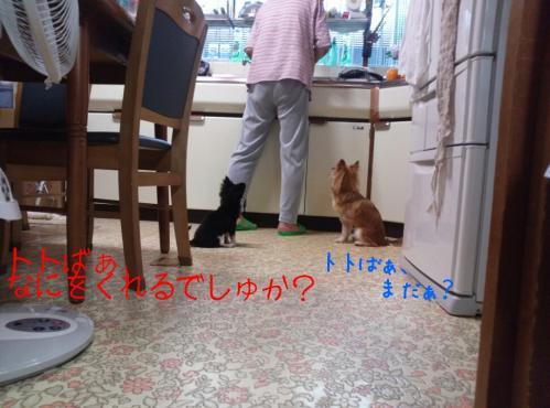 rakugaki_20130914_0018.jpg
