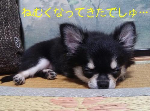 rakugaki_20130914_0020.jpg