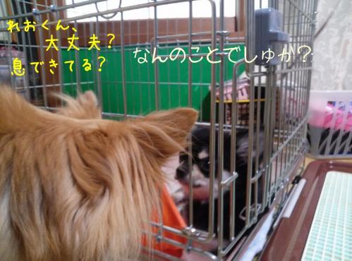rakugaki_20130915_0008.jpg