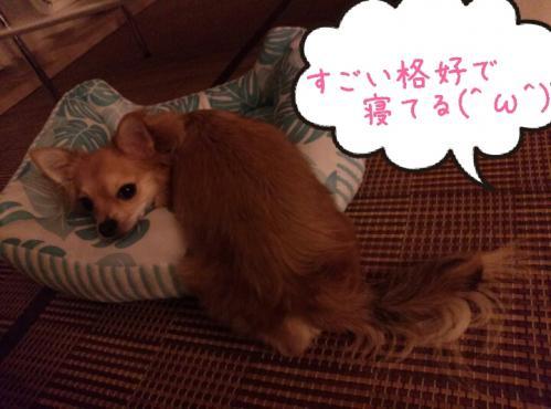 rakugaki_20130916_0001.jpg