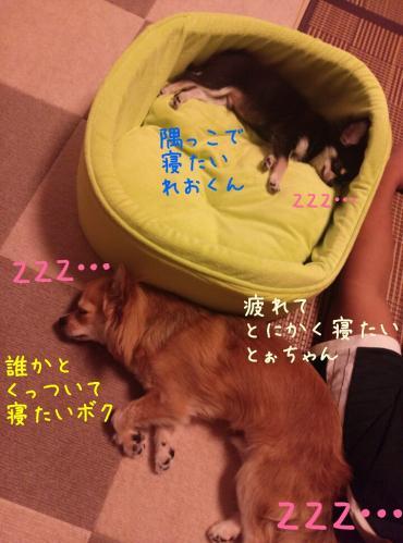rakugaki_20130918_0001.jpg