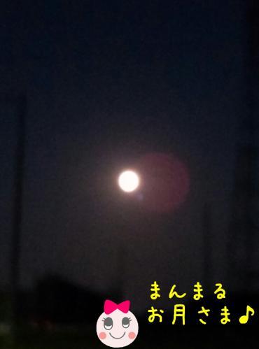 rakugaki_20130919_0002.jpg
