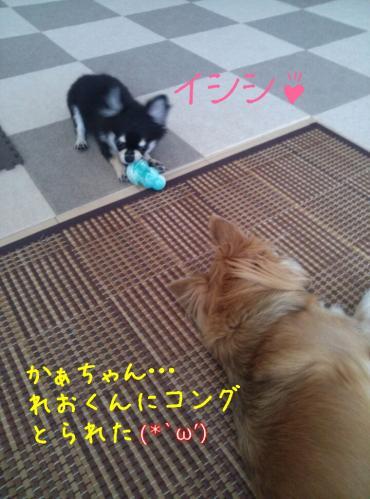 rakugaki_20130919_0003.jpg