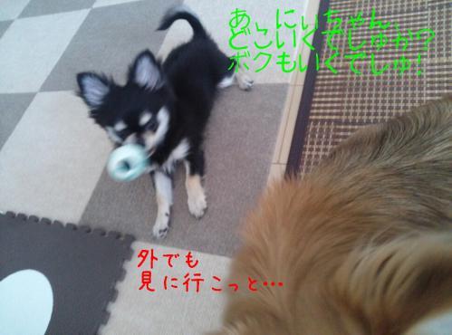 rakugaki_20130919_0004.jpg