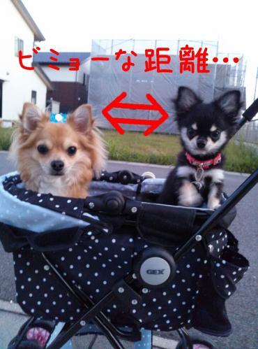 rakugaki_20130922_0001.jpg