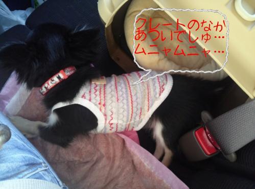rakugaki_20130922_0005.jpg