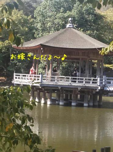 rakugaki_20130922_0013.jpg
