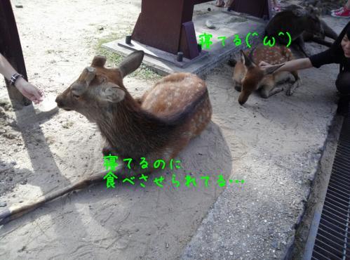 rakugaki_20130922_0017.jpg