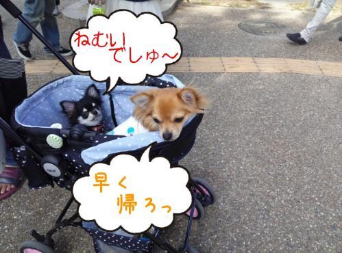 rakugaki_20130922_0019.jpg