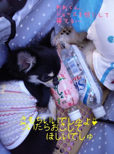 rakugaki_20130922_0021.jpg