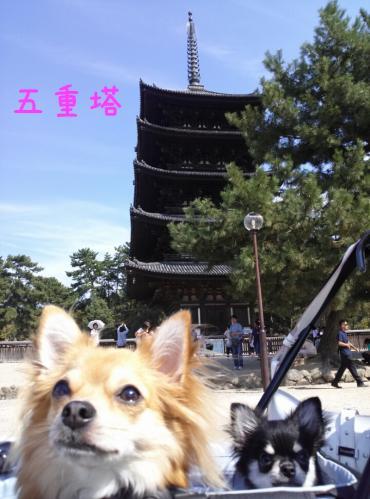 rakugaki_20130922_0022.jpg