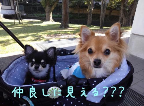rakugaki_20130922_0024.jpg