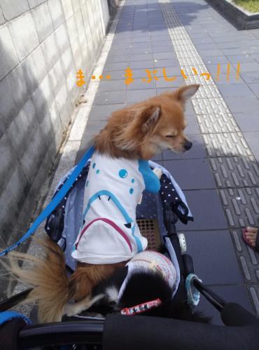 rakugaki_20130922_0031.jpg