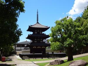 興福寺三重塔1 300