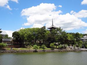 猿沢の池1 300