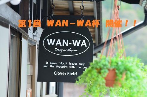 WAN-WA-1-1