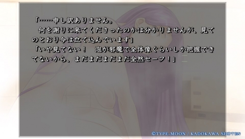 Vita版『Fate/hollow ataraxia』購入  (26)