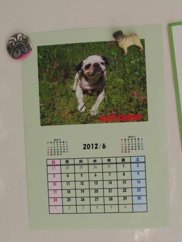 120601シニアパグカレンダー