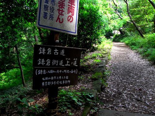 120615鎌倉古道