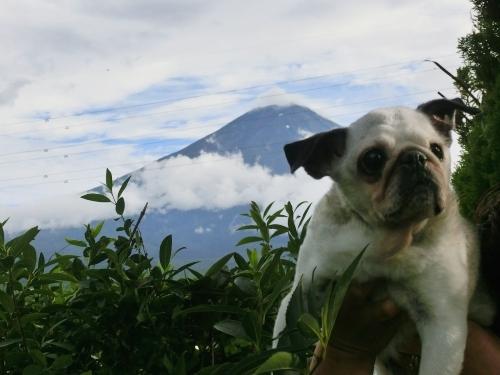 120815富士山