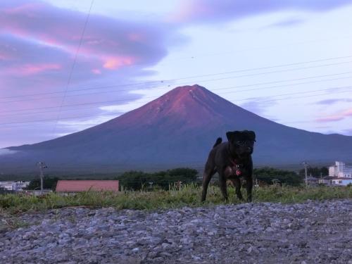 120816富士山