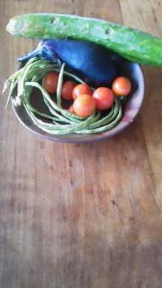 ささげと野菜