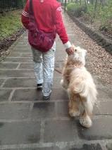 父ちゃん散歩2