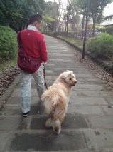 父ちゃん散歩6
