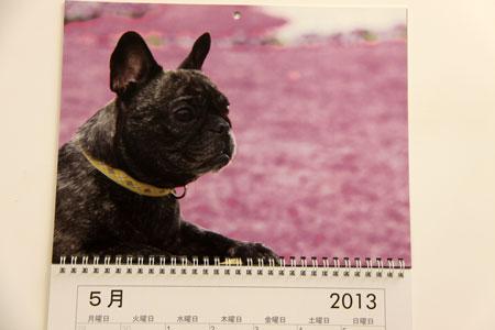 カレンダー5月