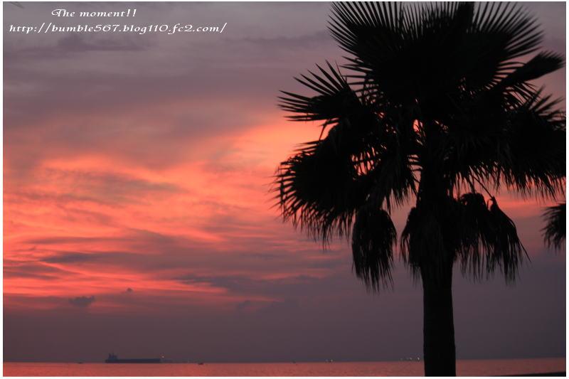 夕焼けの海1