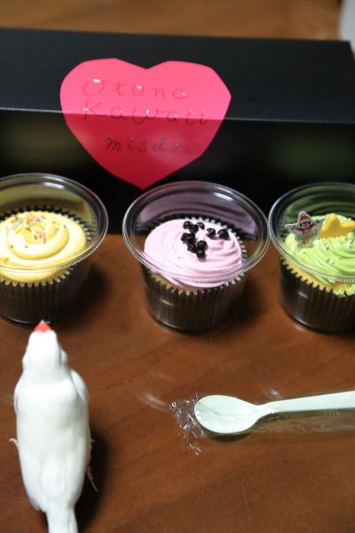 misudo no NY cupcake (2)