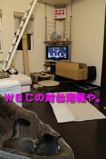 IMG_0118_RWBCの対台湾戦や。