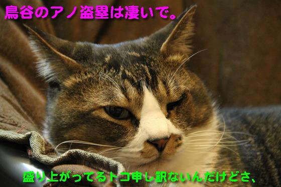 IMG_0113_R鳥谷のアノ盗塁は凄いで。