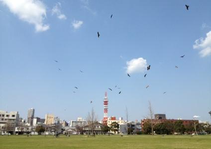 washi4.jpg