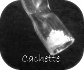 cache01.jpg