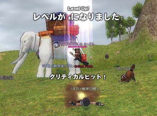 new0271.jpg