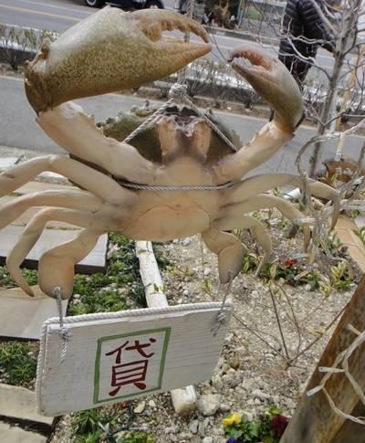 OPEN 蟹