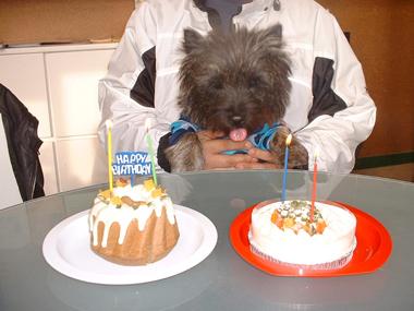 07誕生日