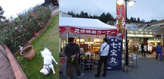 fukuyama141109-horz.jpg