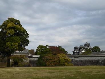 kumamoto141110.jpg