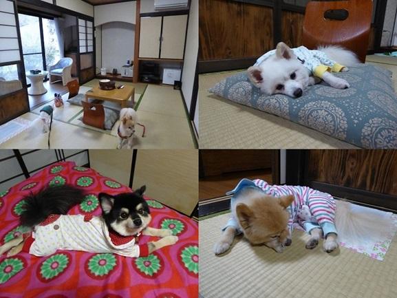 mizuwake141111_2-tile.jpg