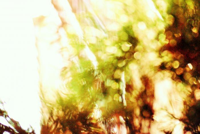 106_convert_20130301060704.jpg