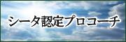 伊藤様サイドバーシータ認定プロコーチ131008
