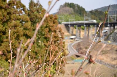 130316kinntetsu_024.jpg