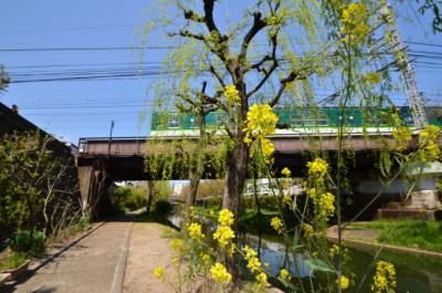130413keihan_002.jpg