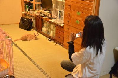nankanoshima_044.jpg