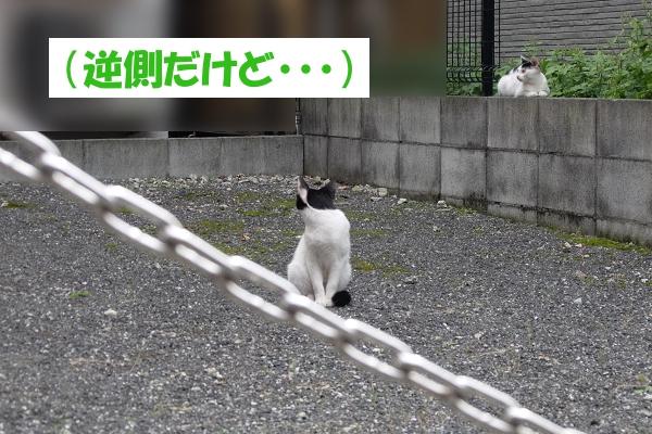 (逆側だけど)
