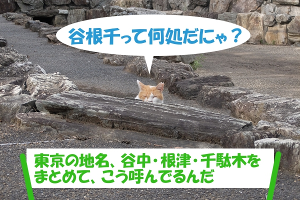 谷根千って何処だにゃ?東京の地名、谷中・根津・千駄木をまとめて、こう呼んでるんだ