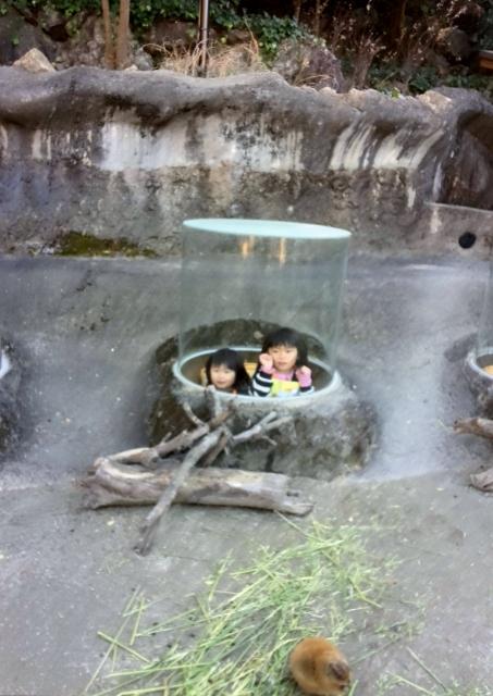 のいち動物園