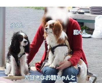 DSCF1823_convert_20120625162820.jpg